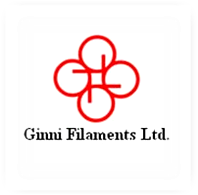 Ginnin Finance Ltd.